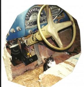 steering wheel pontiac
